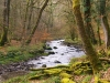 photo of the danes brook river on exmoor